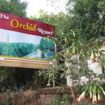 The Shreyas Orchid Resort