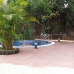 Pool and grounds - Shreyas Orchid