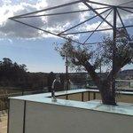 Photo of Restaurante Turismo Lounge