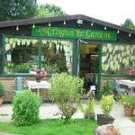 Arlington Tea Gardens