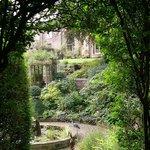A view through the garden to our house
