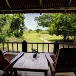 View of the bush from the veranda.