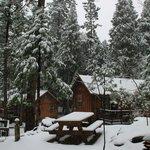 Snowfall overnight