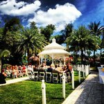 Our Beautiful Wedding at The Palms Hotel & Spa