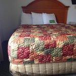 Old timey (1980s) bedspread