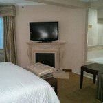 Riviere Room #4 Gas Fireplace and LCD TV