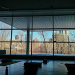 The view of downtown Calgary through the trees from the yoga studio. A lovely place to practice.