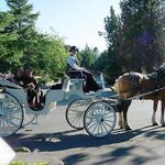 Horse and carriage rides are for lovers, young and old.