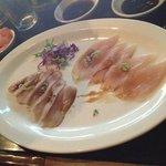 Salmon/ Marlin