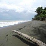 Tico Esteban tour of Corcovado NP - EMPTY beach