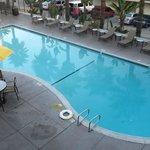 The nice large pool
