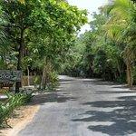 The main road in Tulum