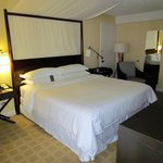 King Size Garden View Room