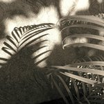 Sepia-toned palm fronds