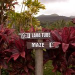 Lava Tube & Maze on the grounds