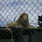 Photo de Kamo Wildlife Sanctuary