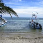 the boats that took us to the dive site