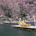 Floating dock with Sun Loungers