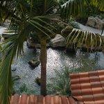 Koi pond and spa