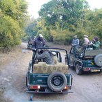 Tala Zone Game Drive