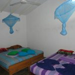 Garden Suite room