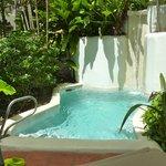 Plunge pool in garden view room
