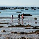 Exploring the tidal flats