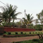 Abundant nature and the red stones tyoical of Konkan