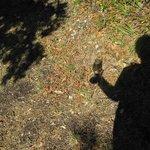 camminare con il bicchiere di vino