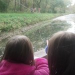 My twins love the mules and canal ride - especially in the f