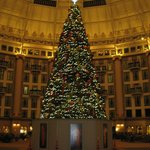 West Baden Hotel Atrium at Christmas