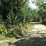 Day hikes around San Gerardo de Rivas