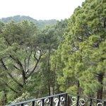 Hotel Pine Valley & Restaurant