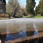 Frozen pond in hotel grounds