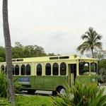 Shuttlebus zum Bootsanleger
