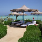 Photo de Blue Reef Red Sea Resort