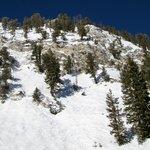 Heading up Summit lift