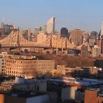 NYC from roon