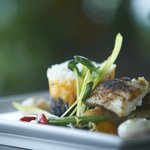 Savour Muskoka dinner specialties