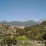 Vista de la Sierra de Grazalema desde Hotel Del Carmen