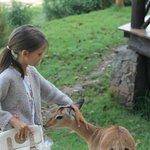 Mi hija con un cachorro de impala