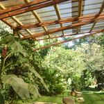 Covered Garden Area