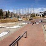 Skate Park & Playground