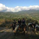 monteverde in the background