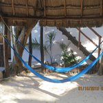 nice relaxing hammock area