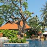 Renaissance pool, Koh Samui