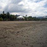 Dark sand/stone beach