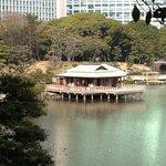 nakajima tea house