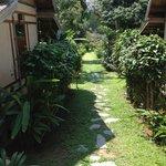 Chemin du Jardin