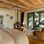 Suite Surrounded by Milkwood trees